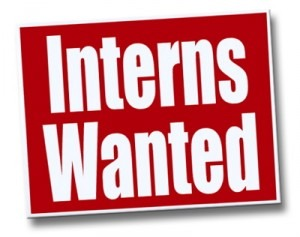 interns wanted 300x237