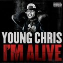 im alive cover
