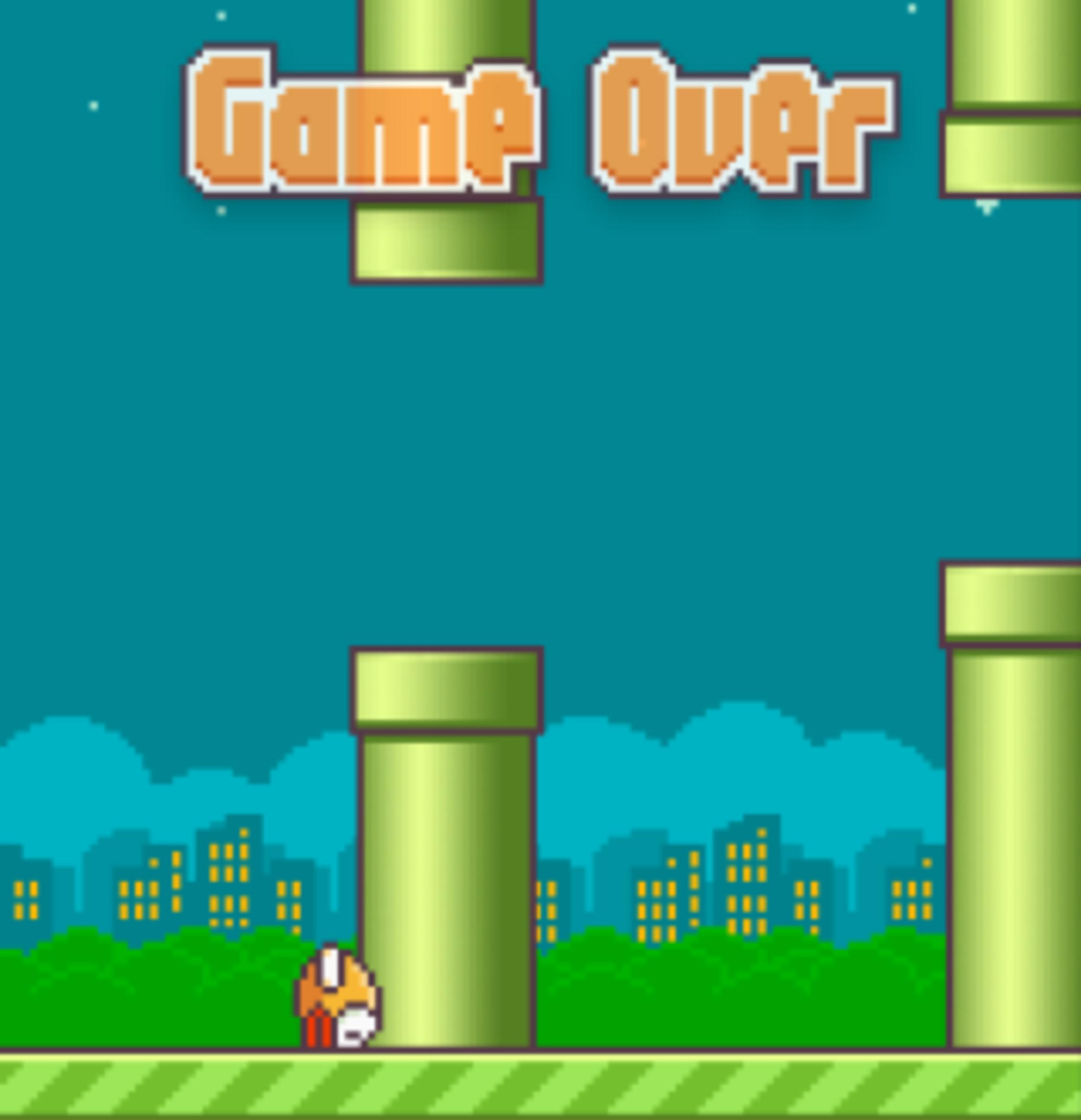Flappy Birds: May 2013 – February 2014