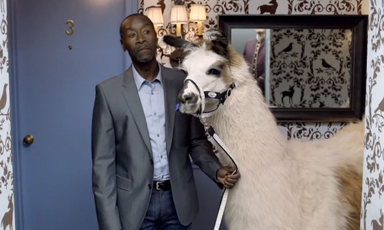 Don Cheadle and Llama in Bud Light commercial