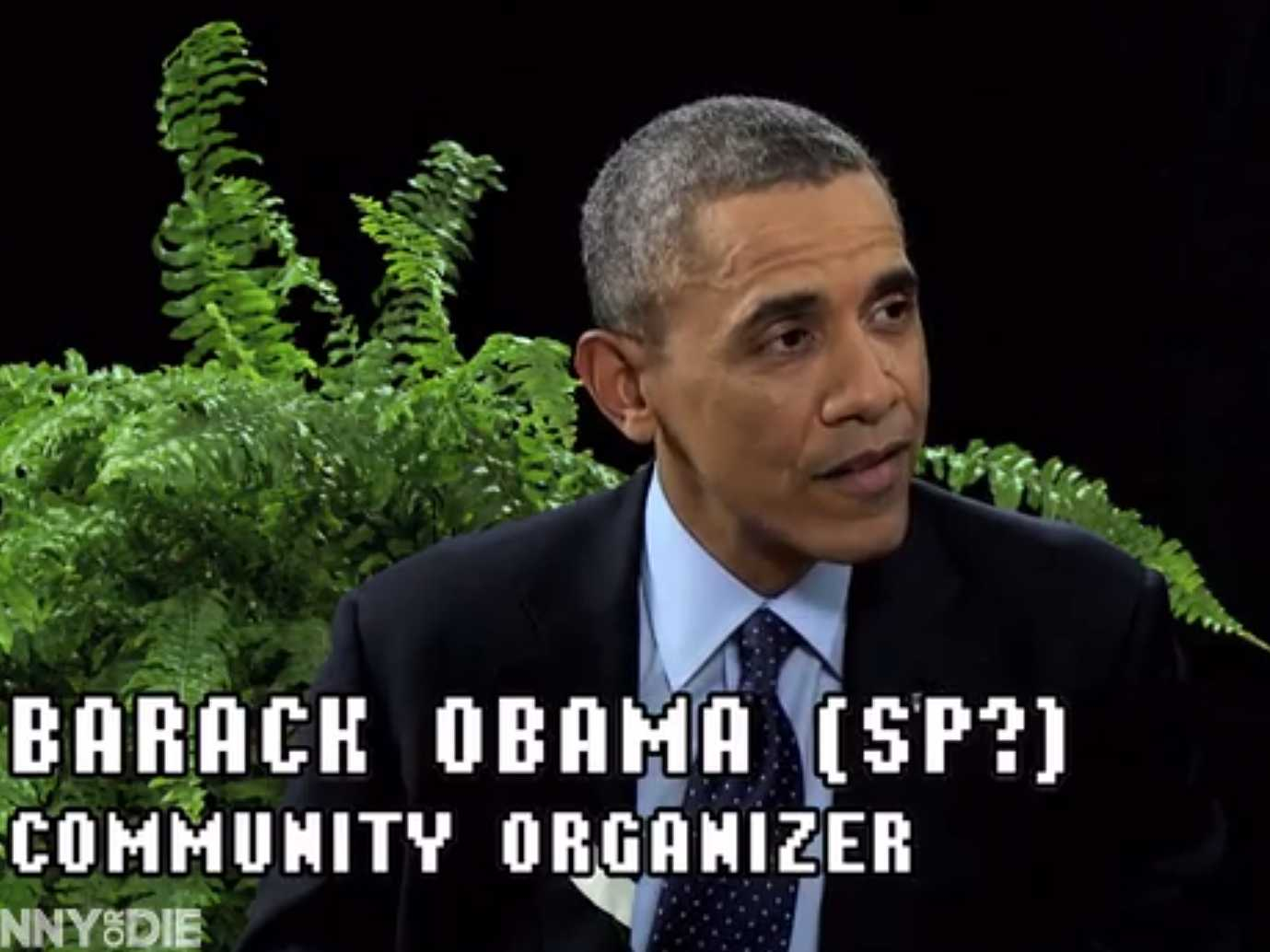barack obama between two ferns zach galifianakis