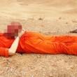 R.I.P James Wright Foley