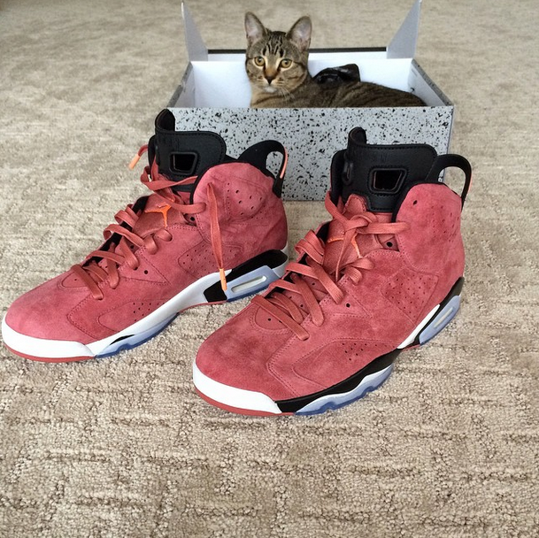 ef0d9a7eefc39c His exclusive red suede Air Jordan 6 s differ a bit from the green ones in  terms of design. With their black   white midsole   black accents they re  ...