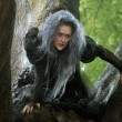 meryl-streep-plays-witch-disneys-film-adaptation-into-woods
