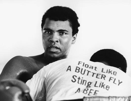 Mohamed Ali Klay float like a butter fly sting like a bee,the greatest boxer ever who died on 3rd of june 2016