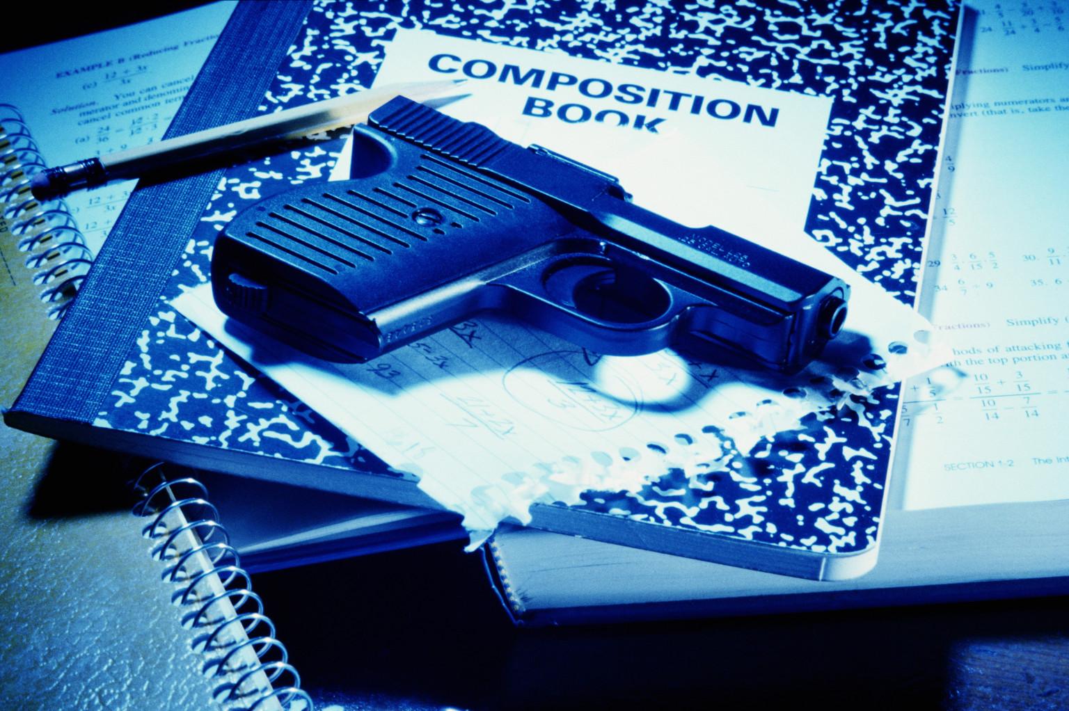 H.B.,DanFlynn,Texas,TeacherProtectionAct,guns,school,