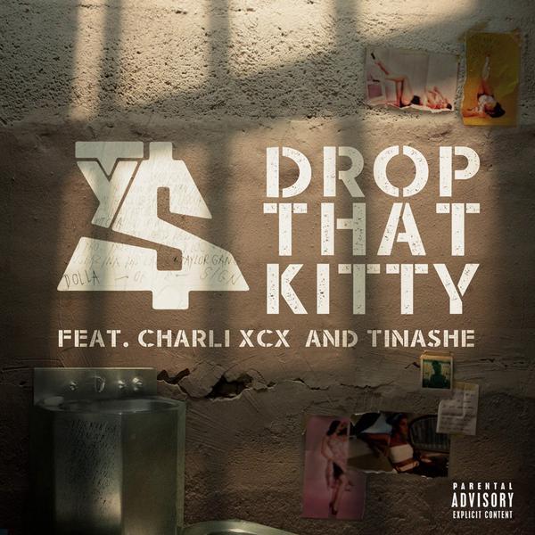 drop that kitty