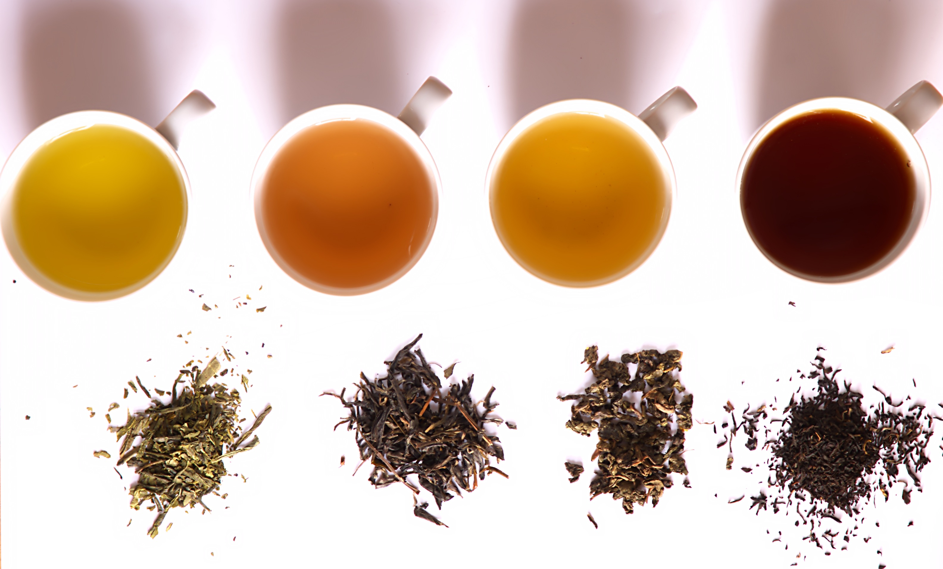 Tea in different grade of fermentation