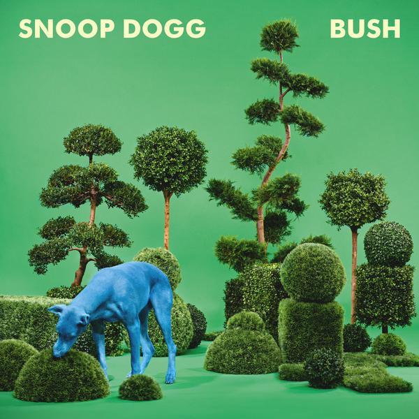 bushc over
