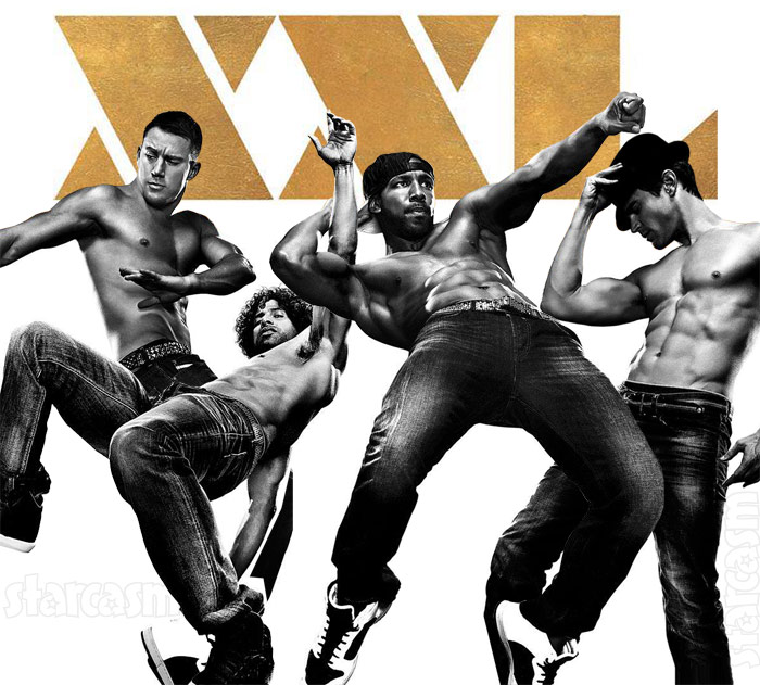 List of Synonyms and Antonyms of the Word: magic mike poster