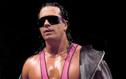 Bret Hart earned a  million dollar salary - leaving the net worth at 14 million in 2018
