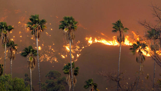 california wildfire AP