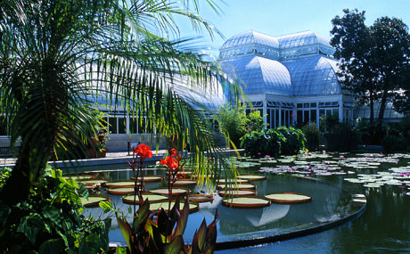 new-york-botanical-garden
