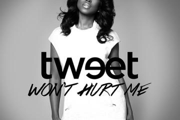 "Tweet's ""Won't Hurt Me"" single cover art"