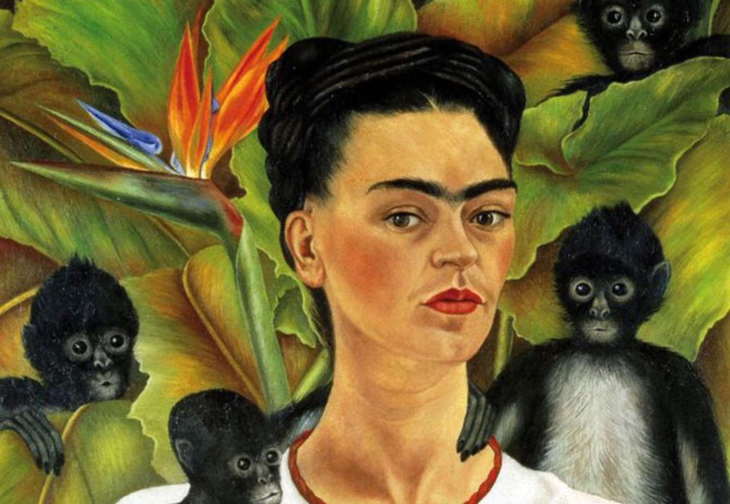 frida kahlo self portrait painexhibit preview frida diego passion politics and painting ifwhqtrb