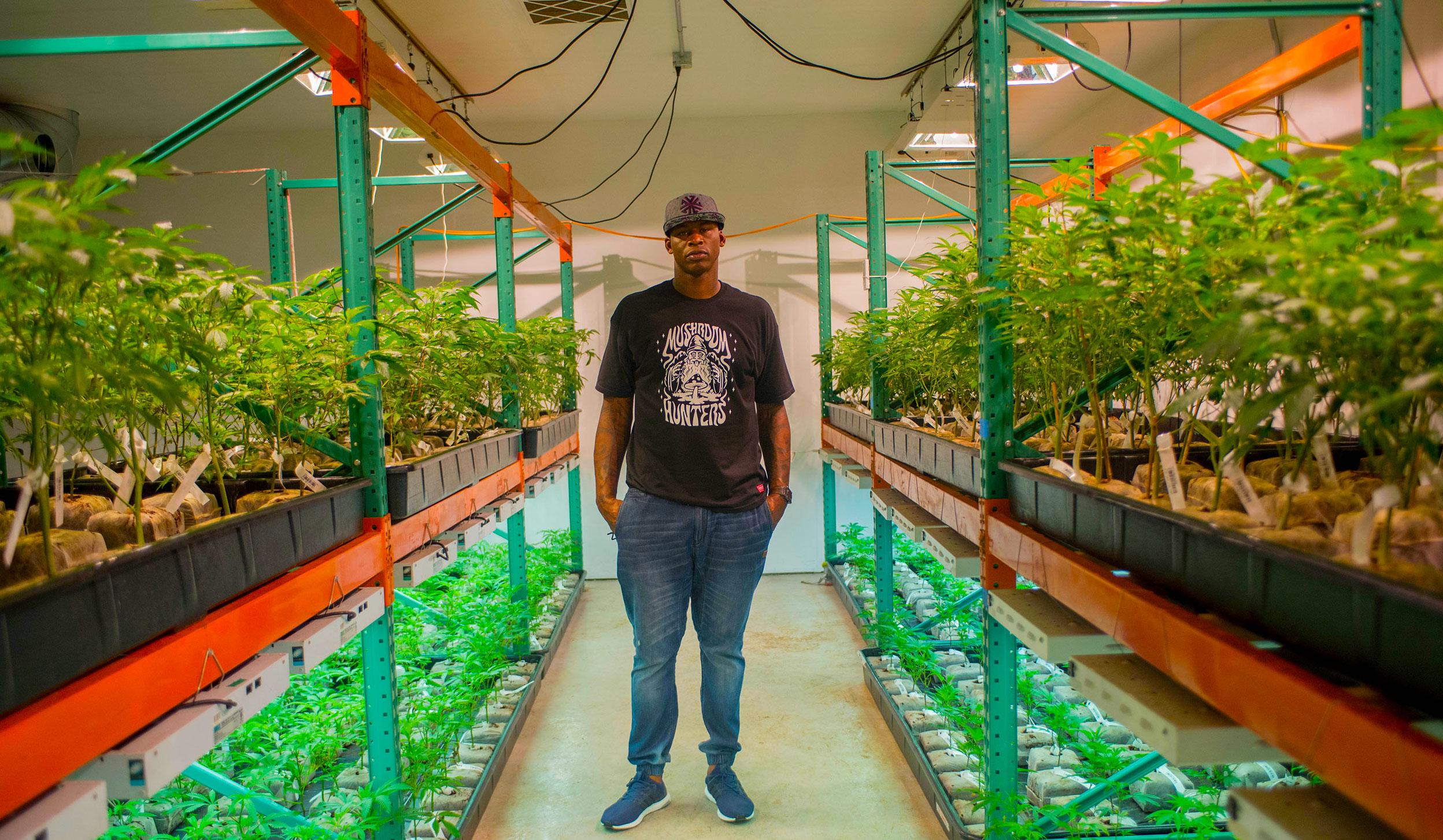 Former NBA Star Al Harrington Breaks Down His Cannabis Empire