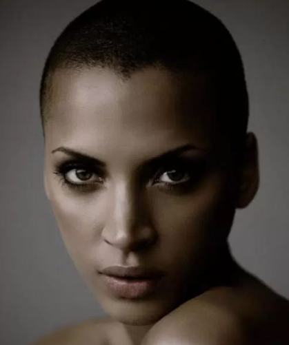 Opinion Noemie lenoir shaved head are