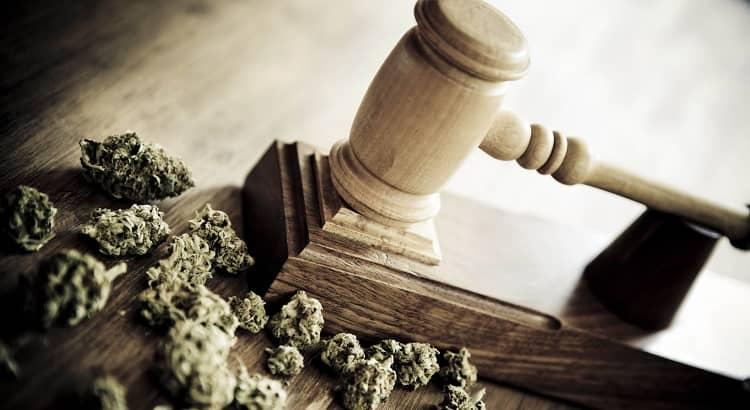 court ruling marijuana