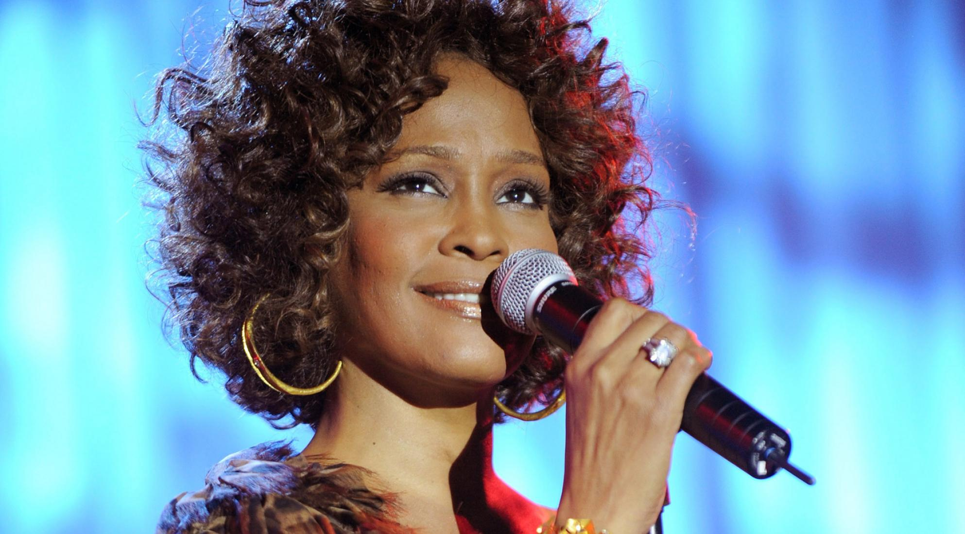 whitney houston hero