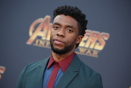 Chadwick Boseman's Wife Files Probate to Control Actor's $1M Estate