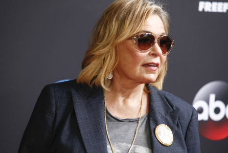 Roseanne Barr Will Not Return to TV, Reveals Self-Interview Plans