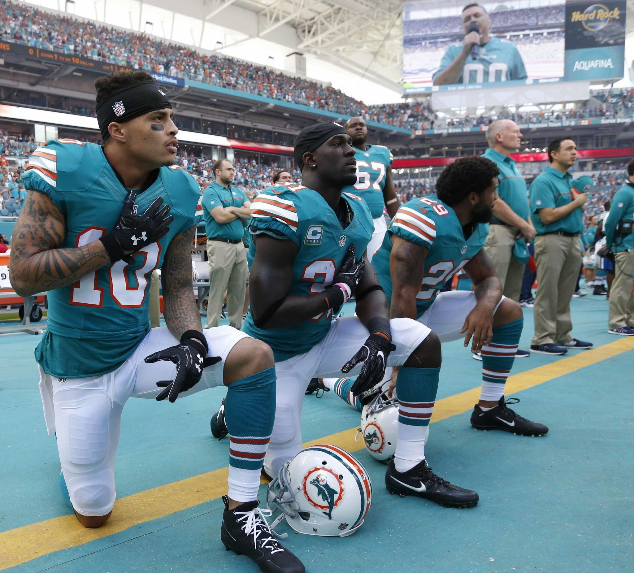 anthem policy dolphins football  sx