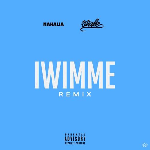 Wale Drops Off 'I Wish I Missed My Ex' Remix