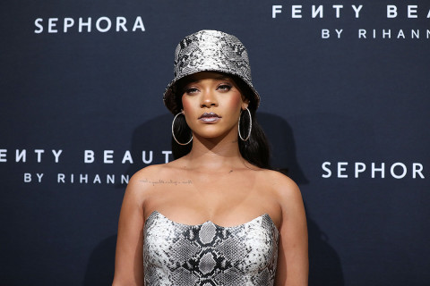 Rihanna's Stalker Reportedly Gets Probation and Rehab