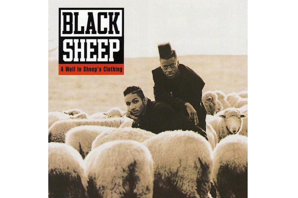 black sheep debut