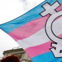 Transgender Flag e