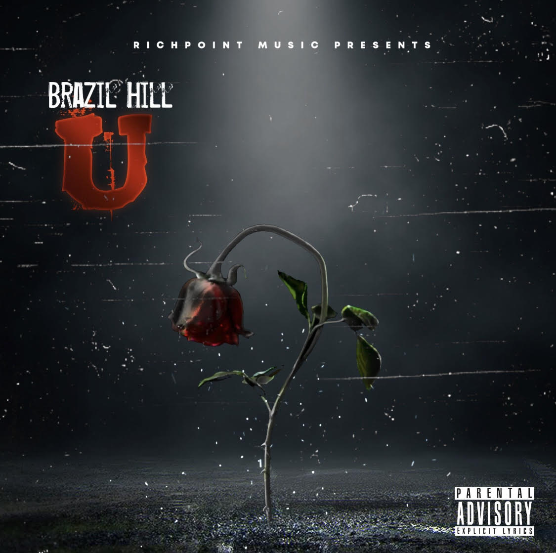 "RichPoint Music Presents Brazil Hill's Latest Melodic Masterpiece ""U"""