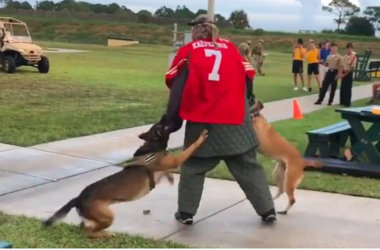 [WATCH] Navy Seal Museum K-9 Trainer Wears Colin Kaepernick Jersey During Attack Demonstration