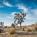 desert landscape 1149773 1920