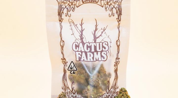 Cactus Farms Indica Travis Scott